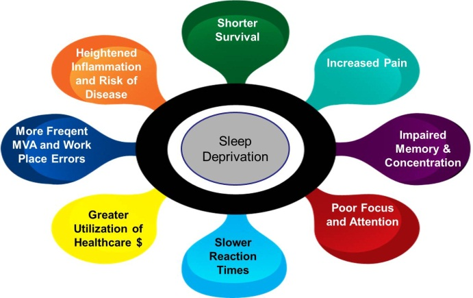 effects of sleep deprivation and disorders The effects of sleep deprivation on brain and behavior  i have a severe sleep disorder i have been going on maybe 8 hours sleep every 2 weeks for the last 6.